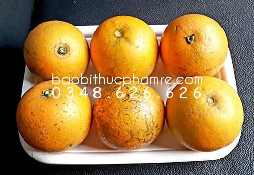 khay giấy kraft M15 đựng hoa quả